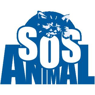 Hospital Veterinario Málaga SOS Animal