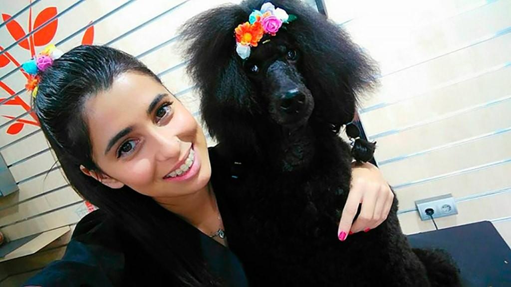 Formación continuada en cursos de peluquería y estilismo canino