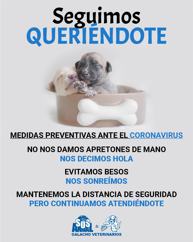 Medidas preventivas ante el coronavirus en centros veterinarios